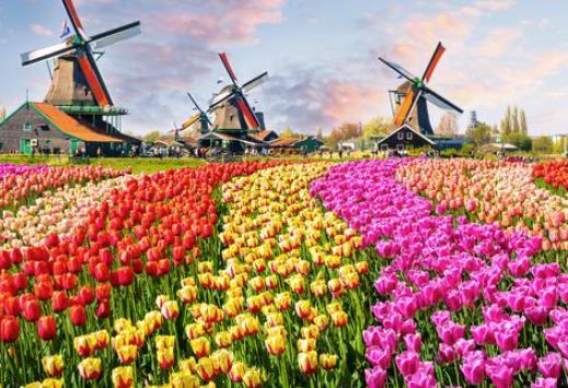 Tempat Wisata di Belanda